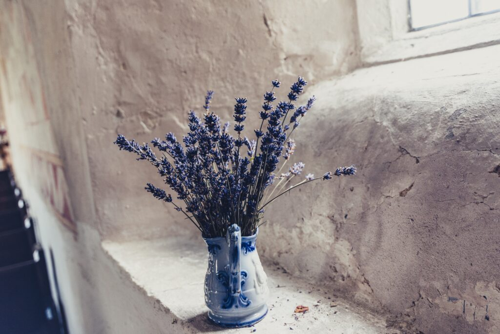 blue flowers in vase on window sill